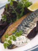 Smoked Mackerel Beetroot Salad with Horseradish Cream - stock photo