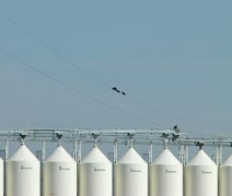 Wide shot of grain elevators and birds on a wire Stock Footage