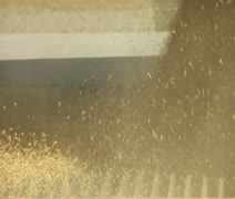 Close-up of grain entering the metal grate Stock Footage