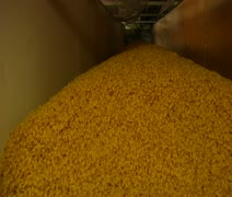 close up on pasta entering chute - stock footage