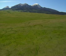 Aerial shot of lush grassy plain and distant snow-covered mountain Stock Footage