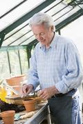 Man in greenhouse putting seed in pot smiling Stock Photos