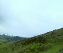 Unsteady aerial shot of lush grassy hills with pines Stock Footage