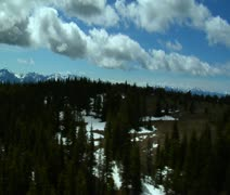 Aerial shot of pine trees in Paradise Valley Montana Stock Footage