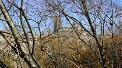 Salamanca Cathedral behind trees Stock Footage