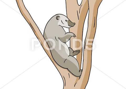 Stock Illustration of small animal