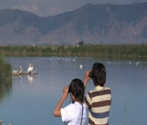 Two boys look at birds with binoculars Stock Footage
