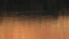 Orange water ripples at sunset on the Colorado River Stock Footage