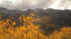 Slide rail shot of yellow aspens and rugged mountain peaks Stock Footage