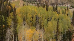 Tilt up to reveal large hotel in autumn forest Stock Footage