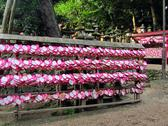 Heart shaped ema plaques ( wish plaques ) at shrine in kyoto, japan Stock Photos