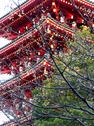 Temple in tokyo, japan Stock Photos