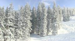 Winterwonderland Stock Footage