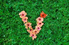 Flower alphabet: letter v Stock Photos