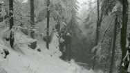 Stock Video Footage of Deep Winter Forest in the german Harz