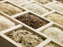 Selection of rices Stock Photos
