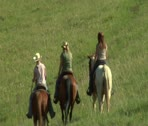 Three young women on horses ride across green meadow-  zoom out Stock Footage