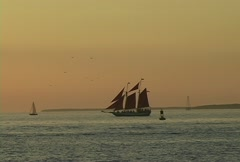 Pirate Ship in Key West Stock Footage