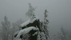 Trees on mountain rocks in deep winter Stock Footage