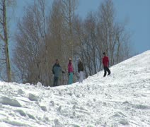 Skiers start down a hilly slope, trees in back - stock footage