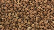Buckwheat zoom in Stock Footage