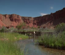 fly fisherman fishing in southern Utah - stock footage
