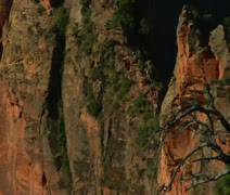 Zoom out of rocky cliff in Zions National Park Stock Footage
