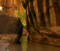 A hiking family wades through creek in canyon Stock Footage
