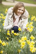 Woman Kneeling In Daffodils - stock photo