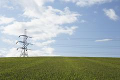 Electricity Pylons In A Paddock Stock Photos