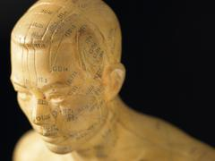 Meridian Lines On An Acupuncture Figurine Stock Photos