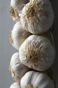 Garlic Cloves Hanging From String Stock Photos
