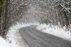 Country Road Lined With Snow And Skeletal Trees - stock photo