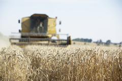 Combine Harvester Working In Field Stock Photos