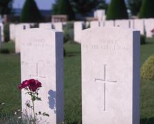Stock Photo of World War two grave stones