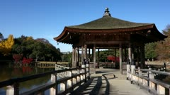 Pavilion In Nara Park Stock Footage