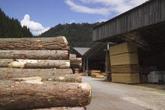Timber yard, near bolzano, trentino, italy Stock Photos
