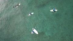 AERIAL: Surfers in the water Stock Footage