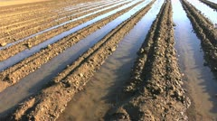 Irrigation Water Canals Stock Footage