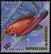 republic of burundi, - circa 1975: a stamp printed by burundi shows the fish - stock photo