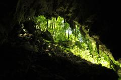 Inside Cave with Tree Reflection in Belize - stock photo
