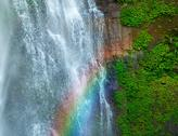 Waterfall with rainbow and green plants Stock Photos