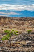 Dry Desert and Mountains Stock Photos