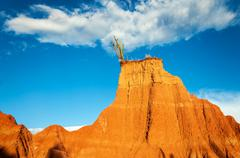 Red Hill and Cactus - stock photo