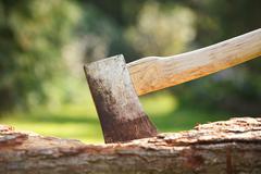 Axe in wood Stock Photos