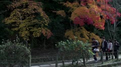 Kyoto Philosopher's Walk In Fall - stock footage