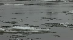Ice flow on river Stock Footage