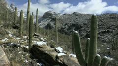 Time Lapse People Hike Melting Arizona Snowfall Stock Footage