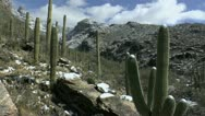 Stock Video Footage of Time Lapse People Hike Melting Arizona Snowfall