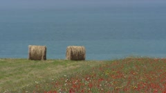 Hay bales and blooming field on clifftop at French coast Stock Footage